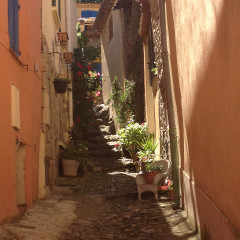 A Peak in Provence, France VII