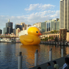 Living it large at Sydney Festival