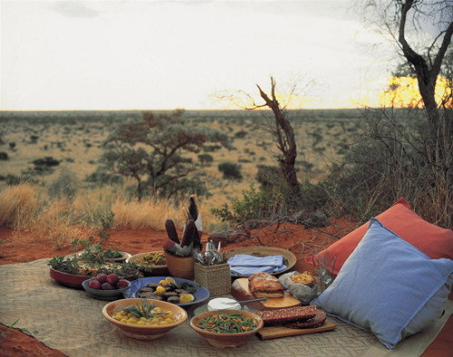 Tswalu picnic