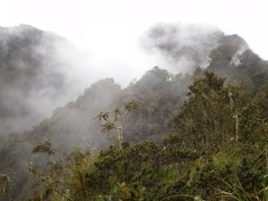 Misty peru