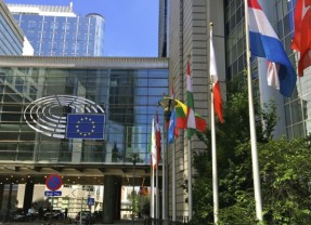 Discovering Political Culture in Brussels