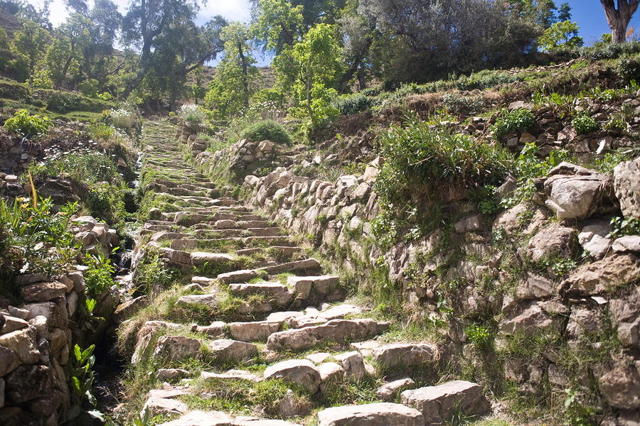 Inka Steps