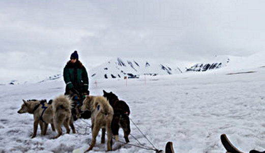 Dog-sledding in Svalbard, Norway