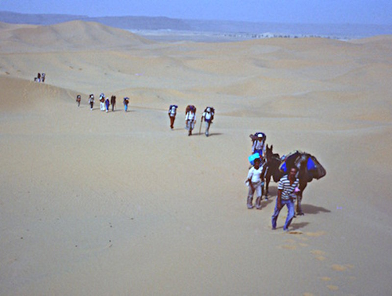 beginning the sahara trek