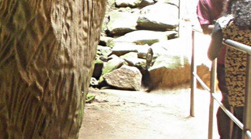 The Strange Symbols at Edakkal Caves