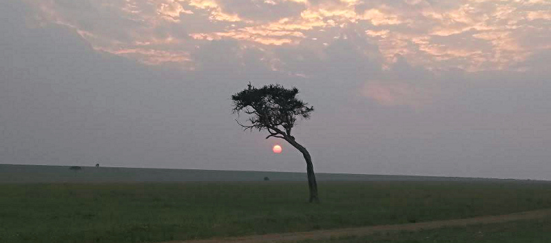 The Stunning Savanna on a Masai Safari