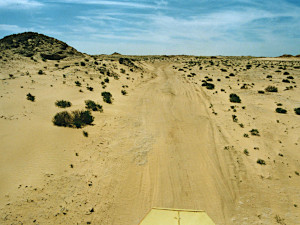 The desert track to Atar