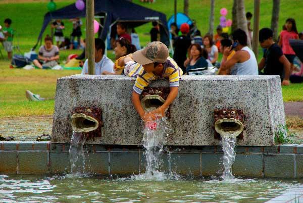 Flowing Water at Higher Shutter Speed