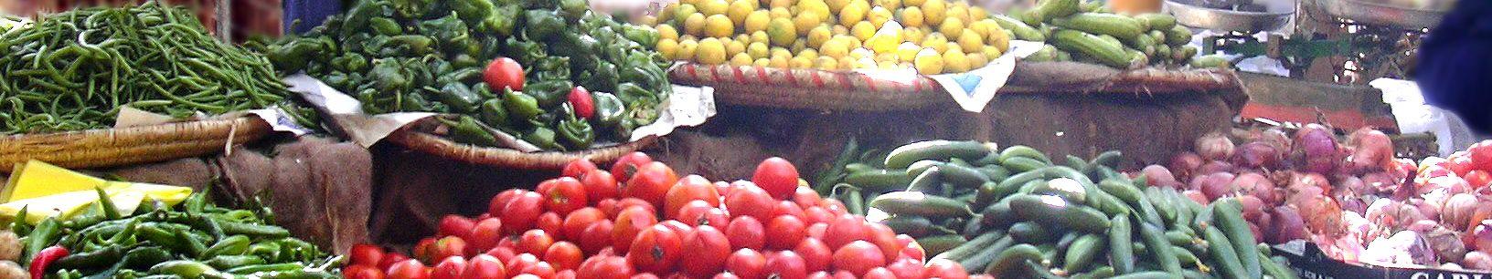 Tastes of Egyptian Foods by Season