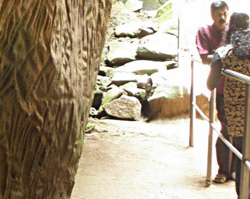 The Strange Symbols <br>at Edakkal Caves