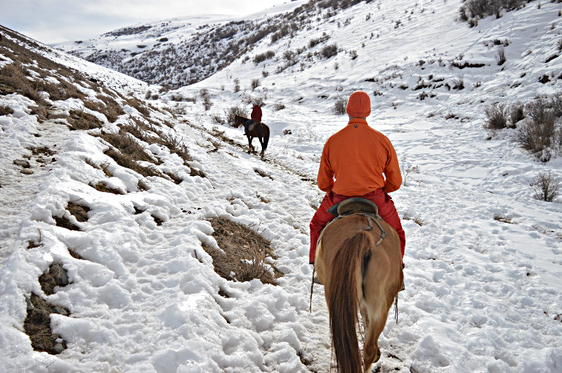 Horseback Trekking in the Kyrgyzstan Mountains