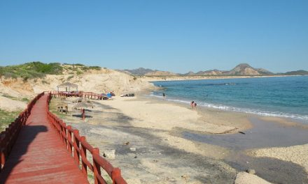 Circling the Tropics – A Baja Sur Road Trip <br>Part 1
