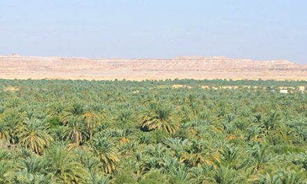 Siwa – A Magical Oasis in Egypt's Western Desert