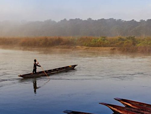 Chitwan National Park, Nepal<br>Searching for the One-horned Rhino